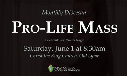 Monthly Diocesan Pro-Life Mass - Saturday, June 1 at 8:30am